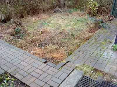 Front Garden Restoration